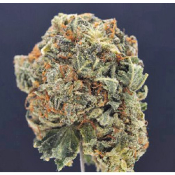 wedding cake weed indica or sativa wedding cake strain order green express 26796
