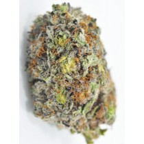 God's Green Crack *Best Seller*