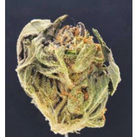 Island Pink *Great Price - 90% Lab Score*