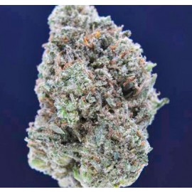 White Rhino *Rare Terpene Profile*