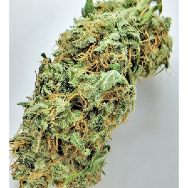 wedding cake weed indica or sativa birthday cake kush order green express 26796